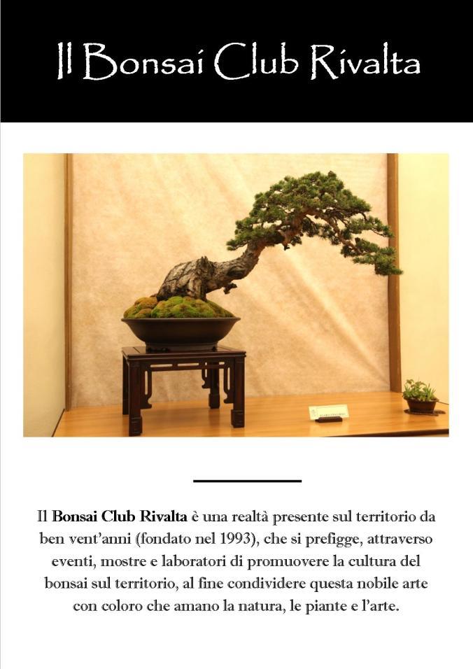 Il Bonsai Club Rivalta 1