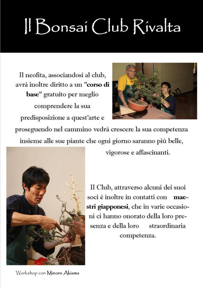 Il Bonsai Club Rivalta 3