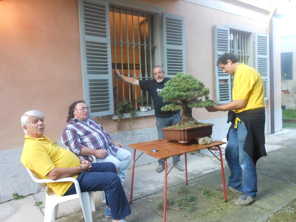 Mostre Rivalta e Pianezza 040